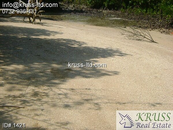 10 acre virgin Sandy Beach plot for sale in Shimoni.