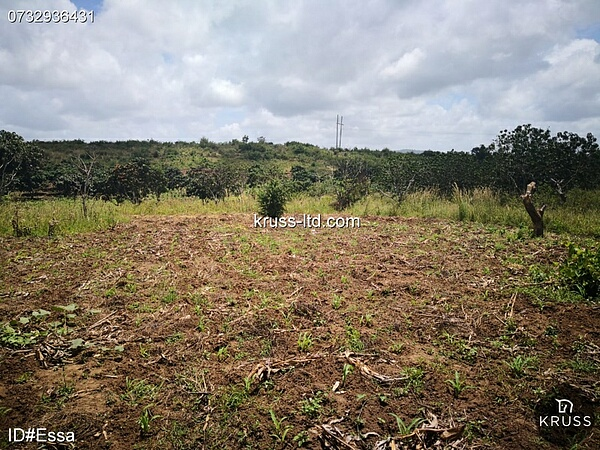 1 acre plot of farm land for sale in Mtwapa