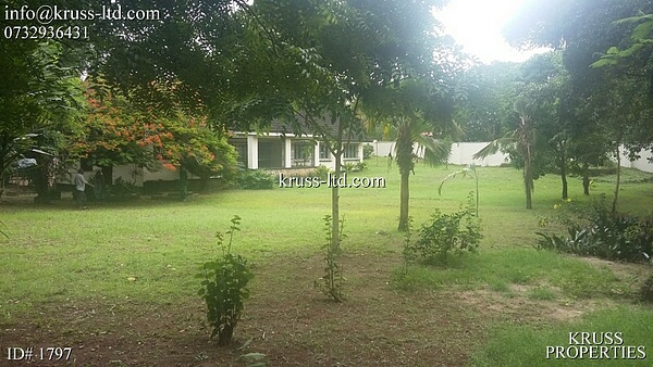 3br house on 1 acre plot for rent in Old Nyali as office or commercial