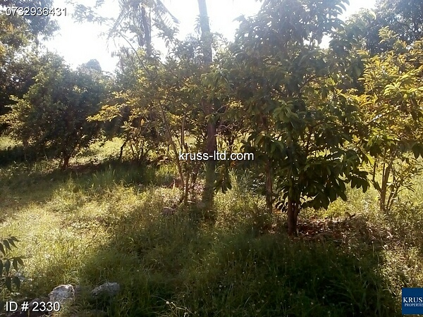 Plot for rent in Nyali