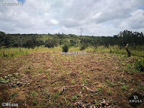 Plots of Land for sale in Mtwapa & Kikambala - KRUSS