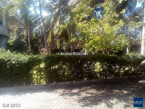 3br spacious apartment for rent in Nyali