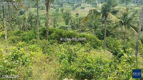 Plot of land for sale along vipingo ridge