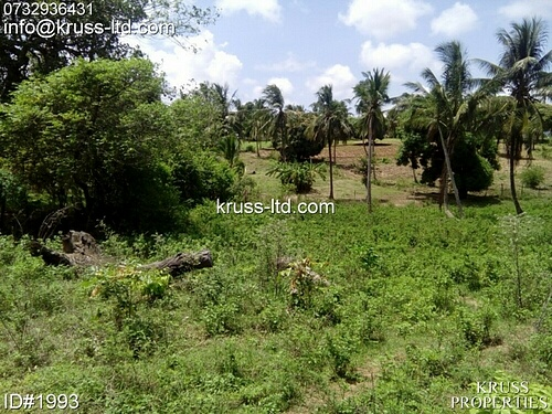 2 acre plot of land for sale in Kikambala