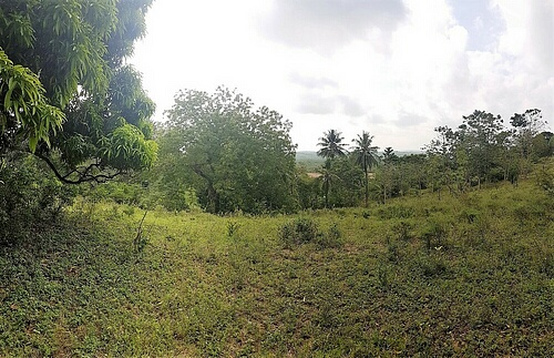 Half acre plot for sale in Mtwapa/Mtomondoni